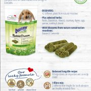 Bunny Nature Rabbit Dream Herbs