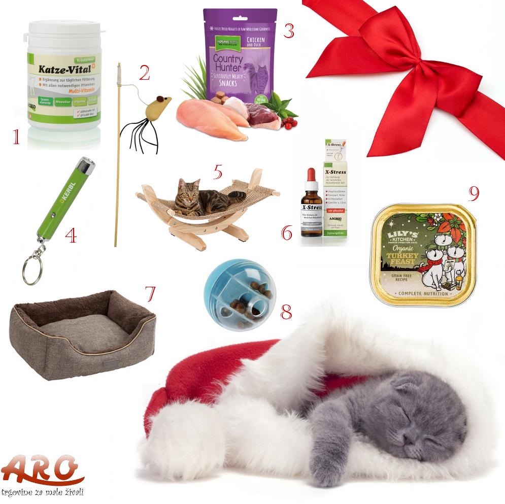Novoletno darilo za vašo mačko