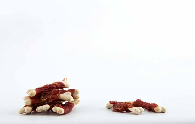 Tailswingers Bones kalcijeve kosti