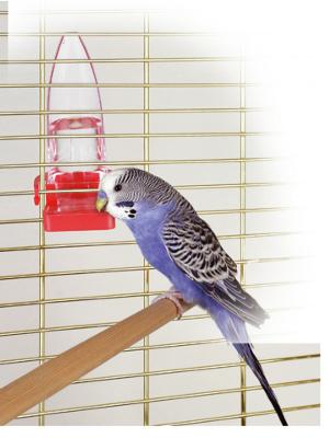 Napajalnik za ptice 110ml
