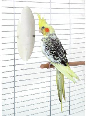 Vitamini in zdravila - ptice