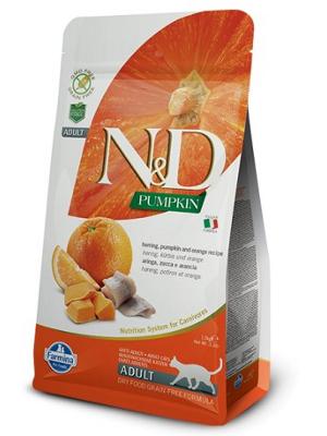 Natural & Delicious Cat Pumpkin Adult Sled