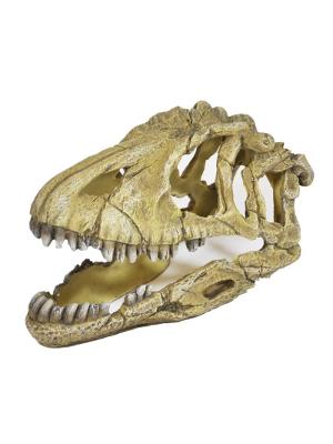 Akvarijska dekoracija lobanja dinozaver 17cm