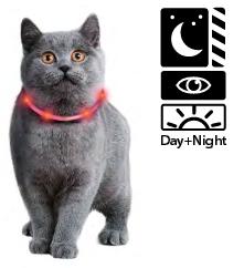 LED svetleča ovratnica za mačke in manjše pse 35cm