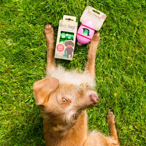 Beco bags - vrečke za pasje iztrebke - biorazgradljive 60kos1