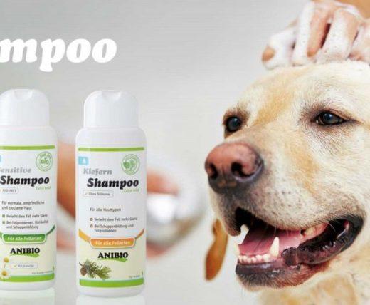 Pasji šamponi